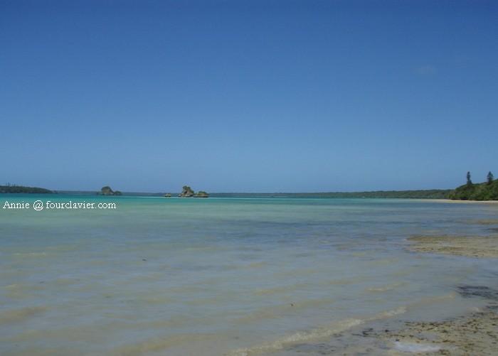 Bleus de l'île des Pins